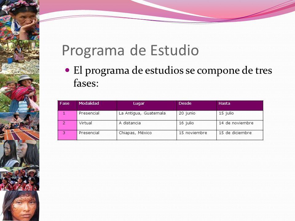 Programa de Estudio El programa de estudios se compone de tres fases: FaseModalidad LugarDesdeHasta 1PresencialLa Antigua, Guatemala20 junio15 julio 2VirtualA distancia16 julio14 de noviembre 3PresencialChiapas, México15 noviembre15 de diciembre