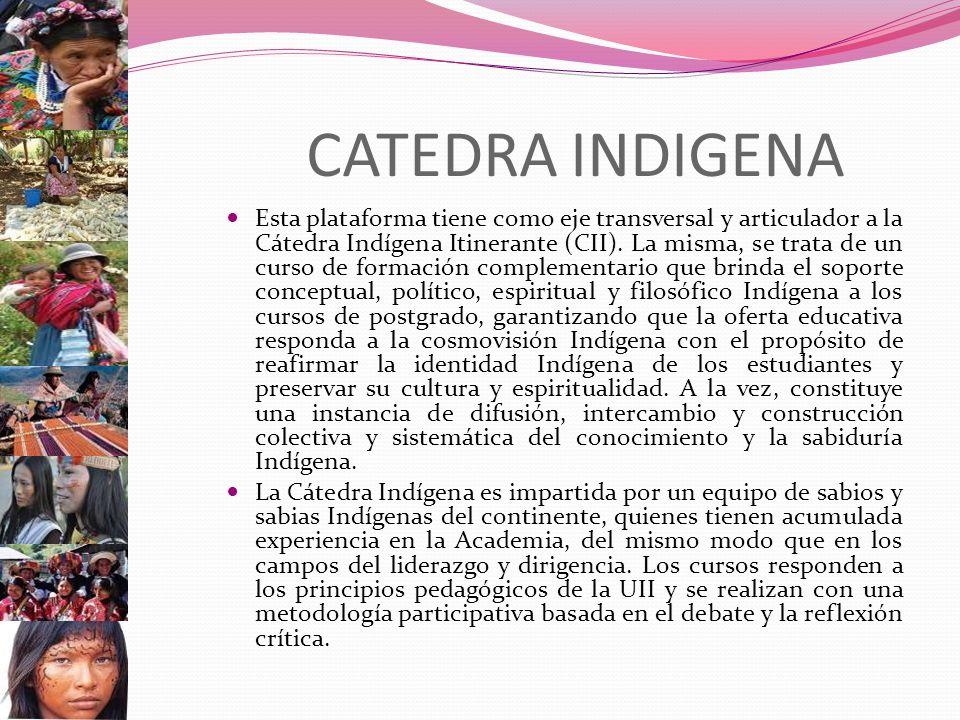 CATEDRA INDIGENA Esta plataforma tiene como eje transversal y articulador a la Cátedra Indígena Itinerante (CII). La misma, se trata de un curso de fo