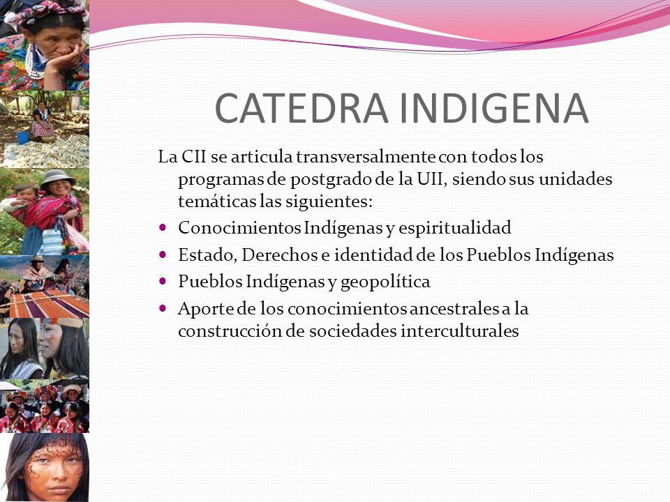 CATEDRA INDIGENA La CII se articula transversalmente con todos los programas de postgrado de la UII, siendo sus unidades temáticas las siguientes: Conocimientos Indígenas y espiritualidad Estado, Derechos e identidad de los Pueblos Indígenas Pueblos Indígenas y geopolítica Aporte de los conocimientos ancestrales a la construcción de sociedades interculturales