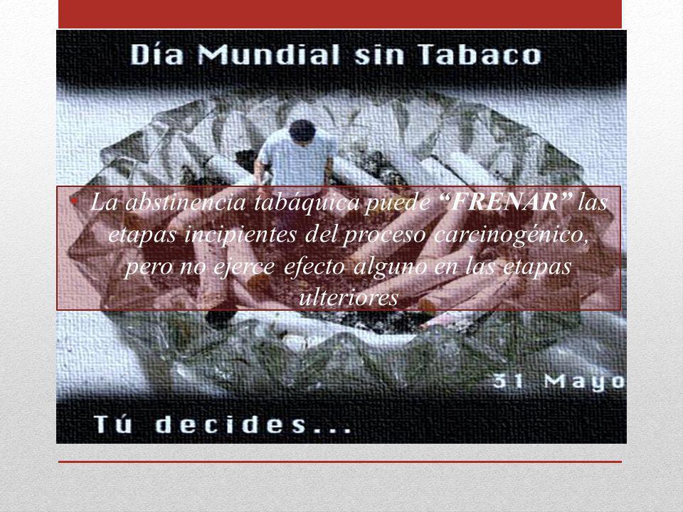 La abstinencia tabáquica puede FRENAR las etapas incipientes del proceso carcinogénico, pero no ejerce efecto alguno en las etapas ulteriores