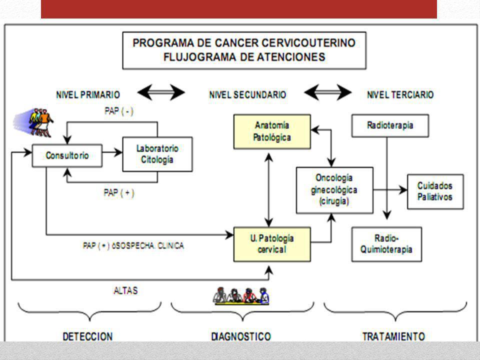 CÁNCER DE PRÓSTATA CÁNCER NO CUTÁNEO con MAYOR FRECUENCIA en varones [12] Aumenta a partir de los 40 AÑOS El 80% de los casos se diagnostican en hombres de más de 65 AÑOS De 95 HOMBRES con cáncer UNO tendrá manifestaciones clínicas [12] Guía para el manejo del cáncer de próstata en oncología en el territorio histórico de gipuzkoa