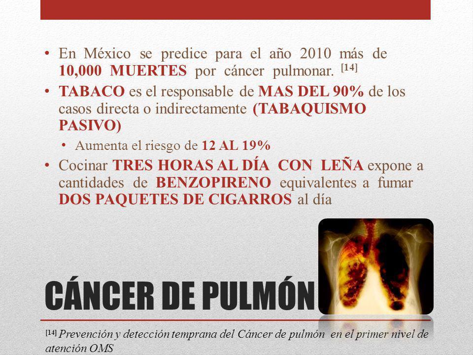 CÁNCER DE PULMÓN En México se predice para el año 2010 más de 10,000 MUERTES por cáncer pulmonar. [14] TABACO es el responsable de MAS DEL 90% de los