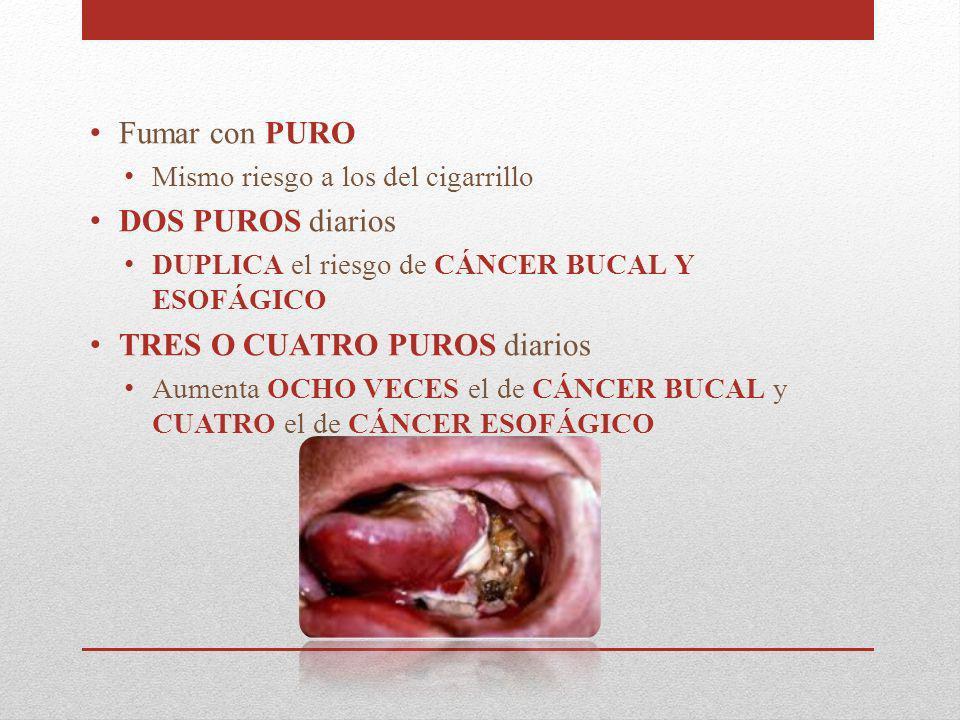 Fumar con PURO Mismo riesgo a los del cigarrillo DOS PUROS diarios DUPLICA el riesgo de CÁNCER BUCAL Y ESOFÁGICO TRES O CUATRO PUROS diarios Aumenta O