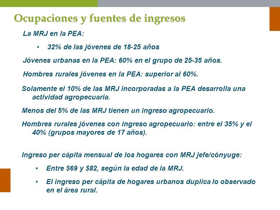 Ocupaciones y fuentes de ingresos La MRJ en la PEA: 32% de las jóvenes de 18-25 años Jóvenes urbanas en la PEA: 60% en el grupo de 25-35 años. Hombres
