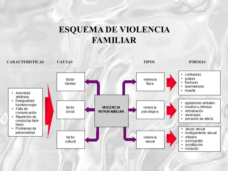 CARACTERISTICAS CAUSASTIPOSFORMAS ESQUEMA DE VIOLENCIA FAMILIAR