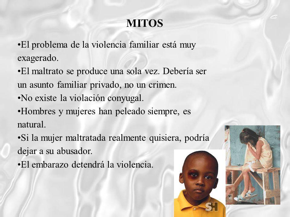 El problema de la violencia familiar está muy exagerado. El maltrato se produce una sola vez. Debería ser un asunto familiar privado, no un crimen. No