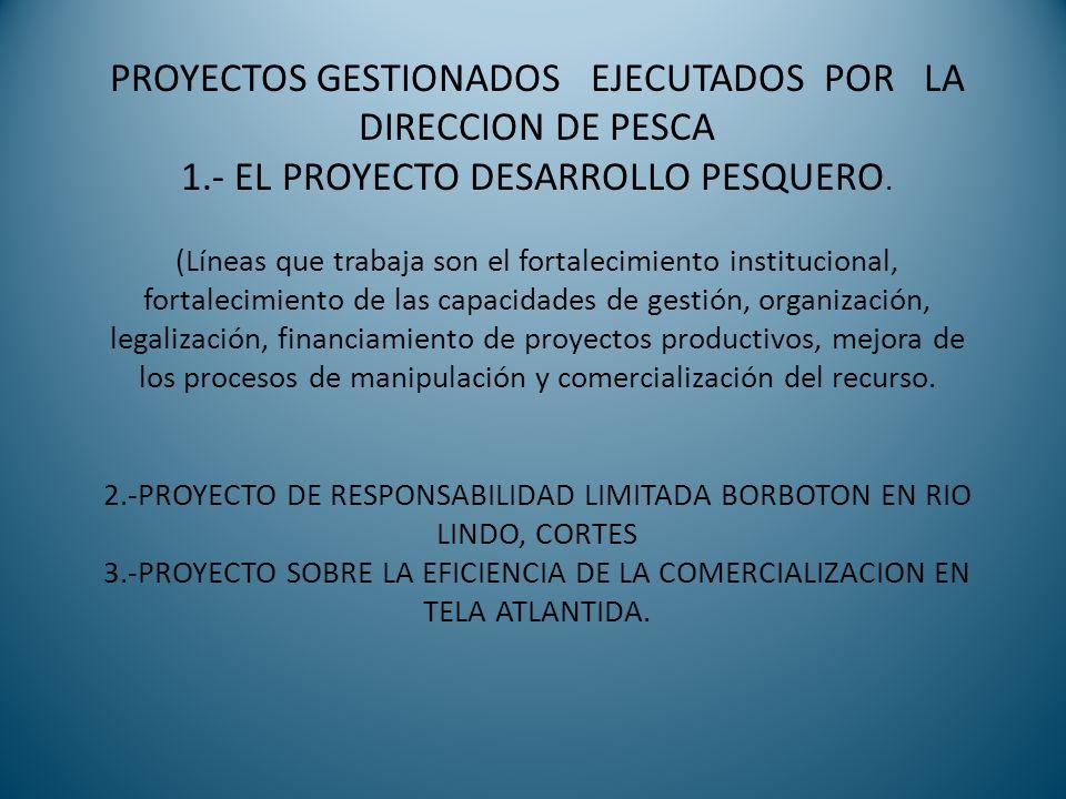 Proyecto de Investigación para captura de Medusa ( Stomolophus meleagris) El objetivo de este Proyecto es fomentar la pesca artesanal de la Medusa como una alternativa económica para beneficio de los pobladores de la Mosquitia.