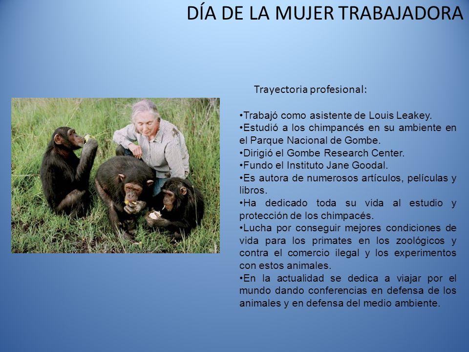 DÍA DE LA MUJER TRABAJADORA Trayectoria profesional: Trabajó como asistente de Louis Leakey. Estudió a los chimpancés en su ambiente en el Parque Naci