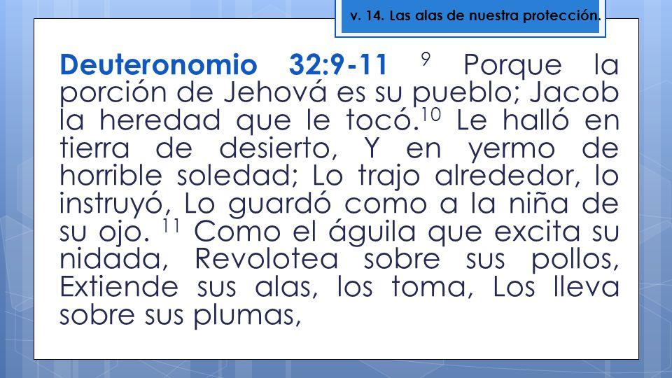 Deuteronomio 32:9-11 9 Porque la porción de Jehová es su pueblo; Jacob la heredad que le tocó. 10 Le halló en tierra de desierto, Y en yermo de horrib