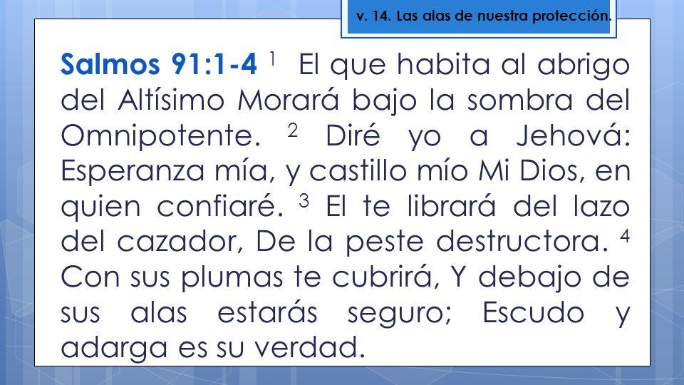 Salmos 91:1-4 1 El que habita al abrigo del Altísimo Morará bajo la sombra del Omnipotente. 2 Diré yo a Jehová: Esperanza mía, y castillo mío Mi Dios,