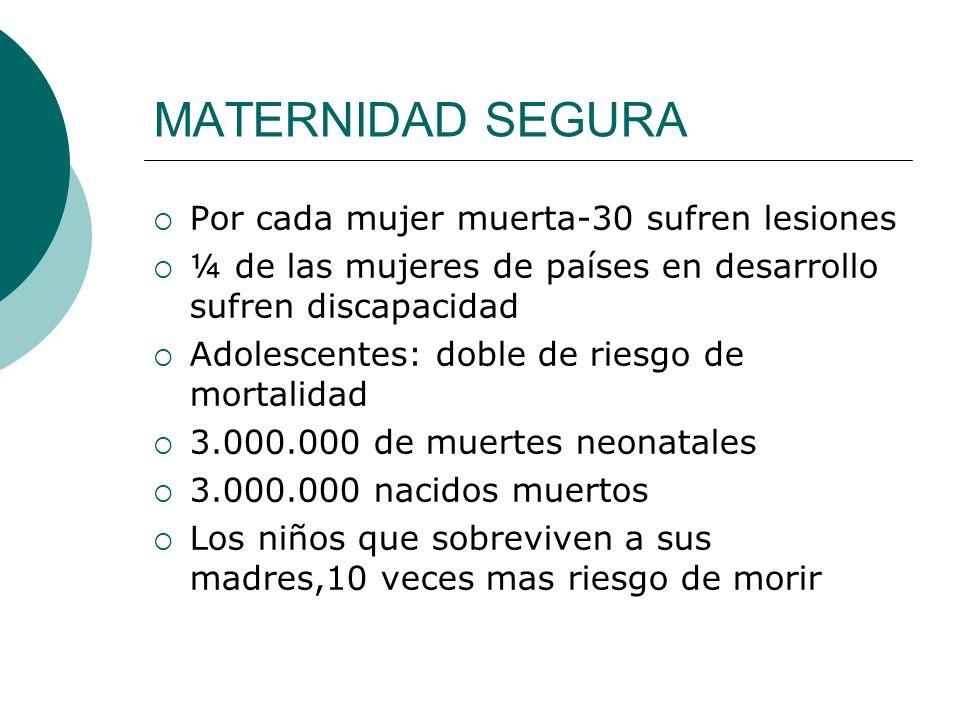 Programa para una maternidad sin riesgo Persona capacitada en cada parto.