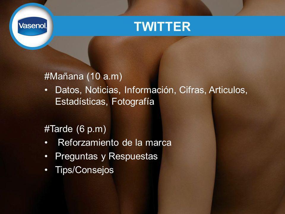 TWITTER #Mañana (10 a.m) Datos, Noticias, Información, Cifras, Articulos, Estadísticas, Fotografía #Tarde (6 p.m) Reforzamiento de la marca Preguntas y Respuestas Tips/Consejos