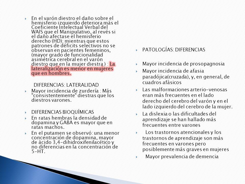 PATOLOGÍAS: DIFERENCIAS Mayor incidencia de prosopagnosia Mayor incidencia de afasia paradójica(cruzada), y, en general, de cuadros afásicos Las malfo
