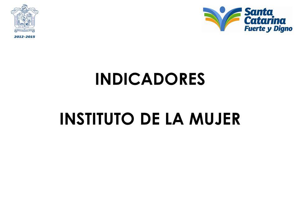 INDICADORES INSTITUTO DE LA MUJER