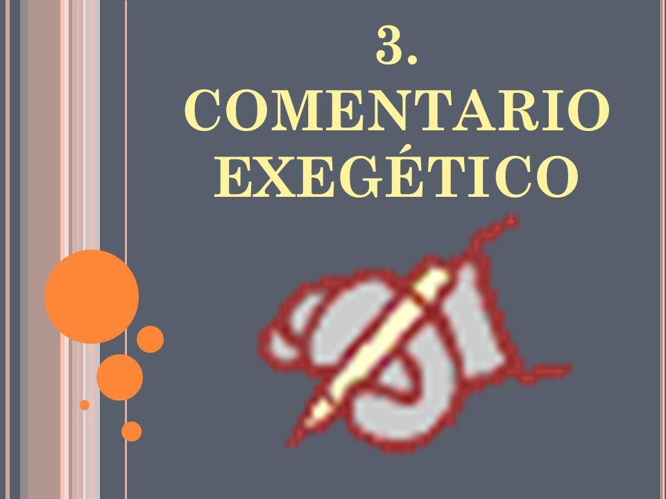 3. COMENTARIO EXEGÉTICO