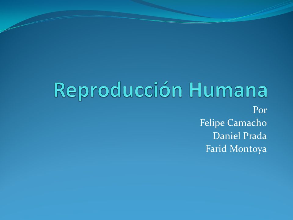 Por Felipe Camacho Daniel Prada Farid Montoya