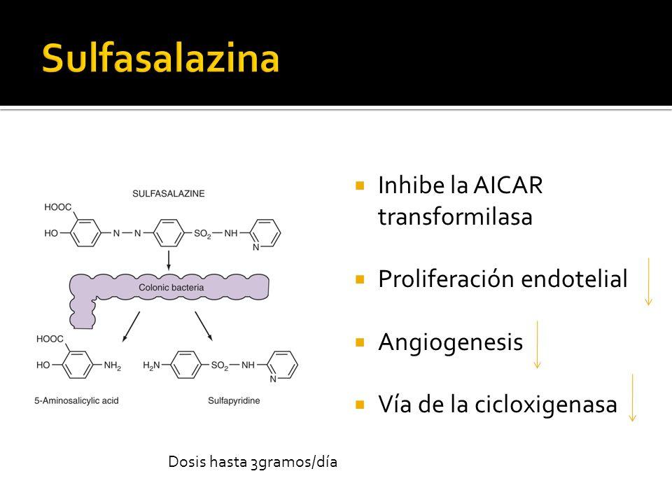 Inhibe la AICAR transformilasa Proliferación endotelial Angiogenesis Vía de la cicloxigenasa Dosis hasta 3gramos/día