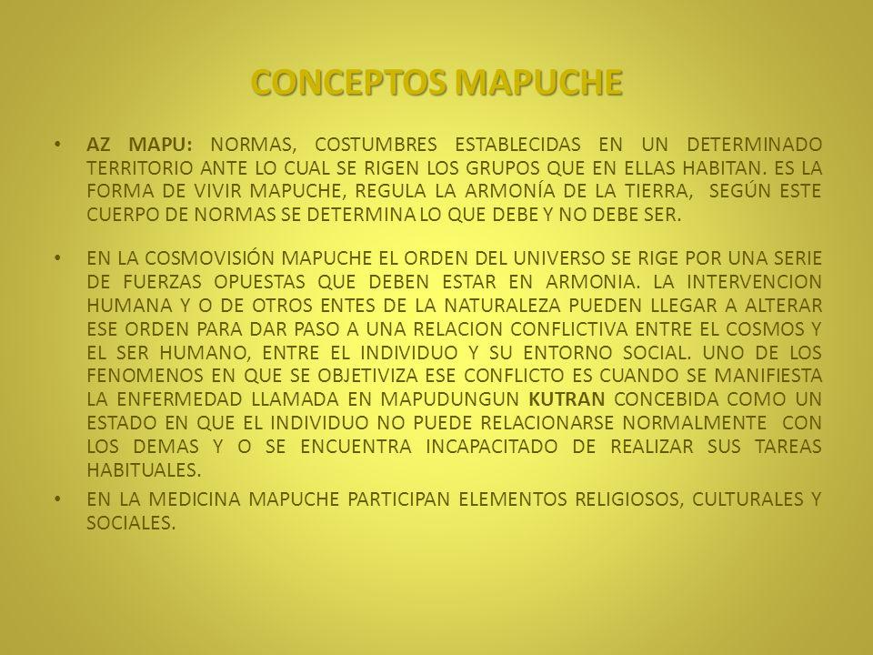NGUTAMCHEFE DETECTA MEDIANTE EL TACTO LOS HUESOS DAÑADOS, SUS DEDOS SON SU PRINCIPAL HERRAMIENTA DIAGNOSTICA, SUS CONOCIMIENTOS SE ADQUIEREN DE GENERACION EN GENERACION DE ANTIGUOS COMPONEDORES DE LA FAMILIA O DE SU COMUNIDAD.