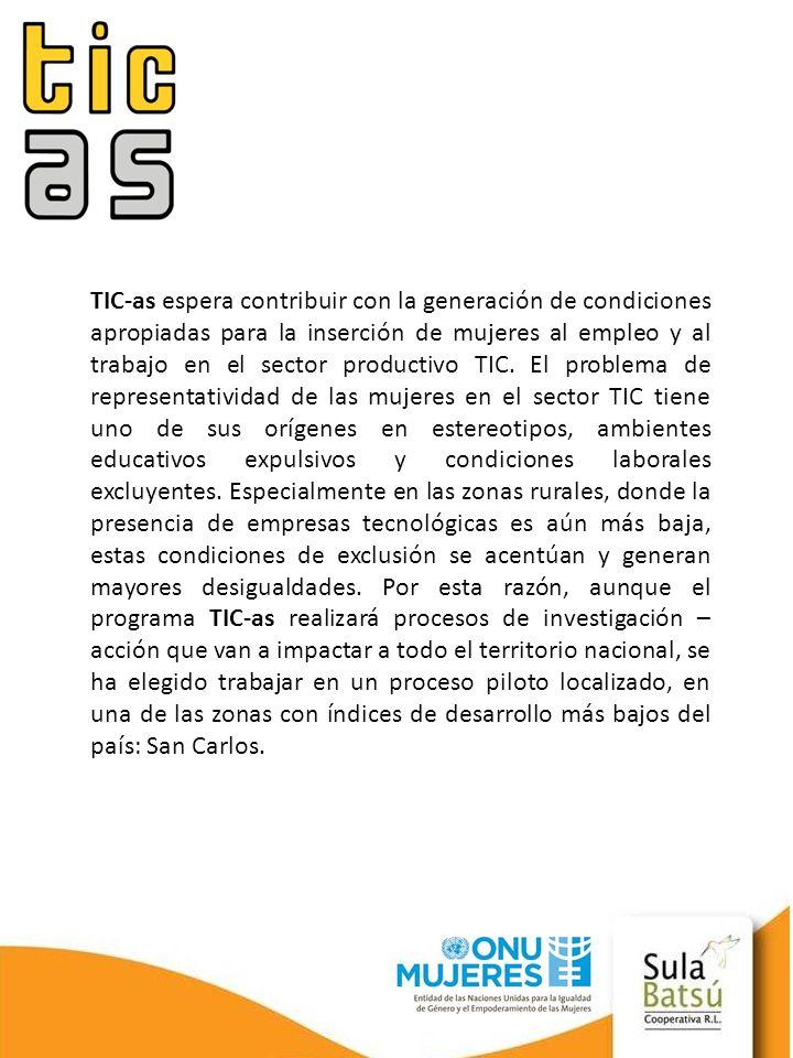 TIC-as espera contribuir con la generación de condiciones apropiadas para la inserción de mujeres al empleo y al trabajo en el sector productivo TIC.