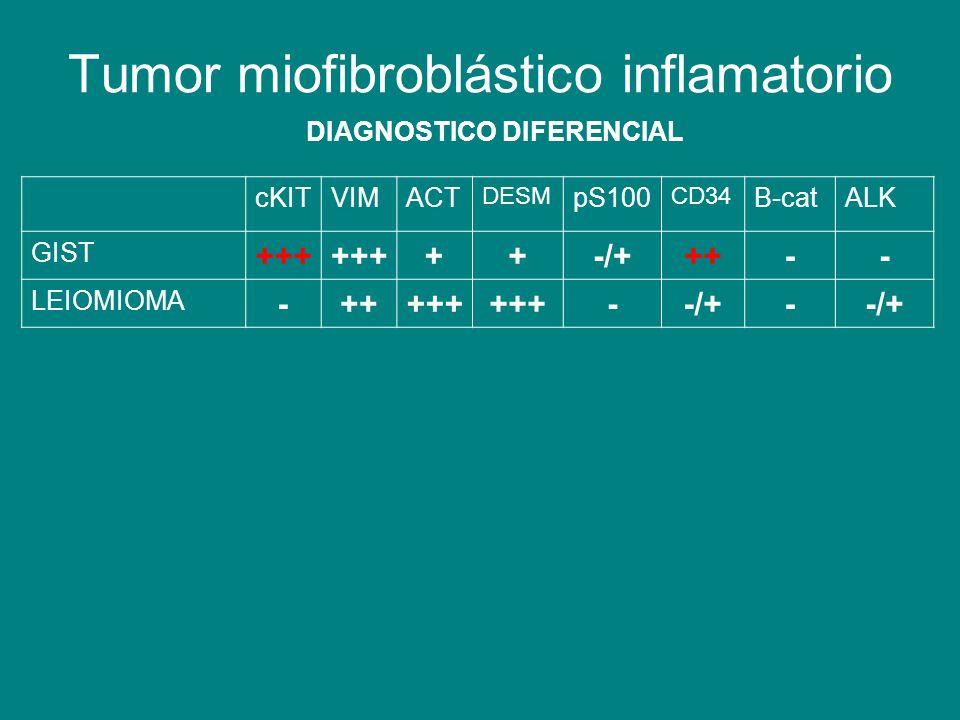 Tumor miofibroblástico inflamatorio DIAGNOSTICO DIFERENCIAL cKITVIMACT DESM pS100 CD34 B-catALK GIST +++ ++-/+++-- LEIOMIOMA -+++++ --/+-