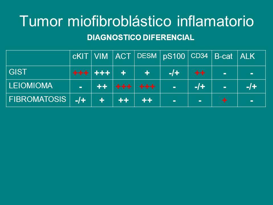 Tumor miofibroblástico inflamatorio DIAGNOSTICO DIFERENCIAL cKITVIMACT DESM pS100 CD34 B-catALK GIST +++ ++-/+++-- LEIOMIOMA -+++++ --/+- FIBROMATOSIS