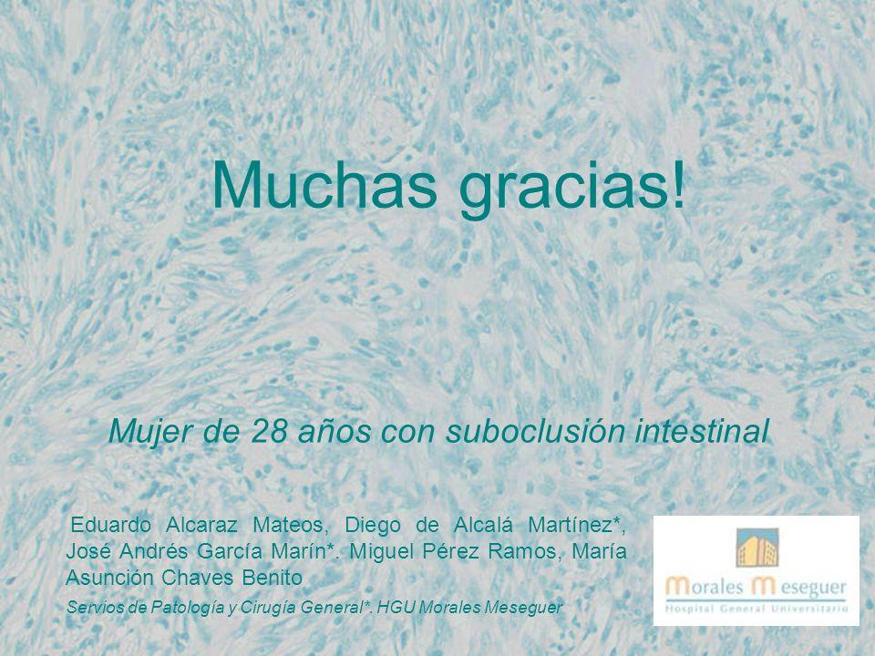 Muchas gracias! Mujer de 28 años con suboclusión intestinal Eduardo Alcaraz Mateos, Diego de Alcalá Martínez*, José Andrés García Marín*. Miguel Pérez