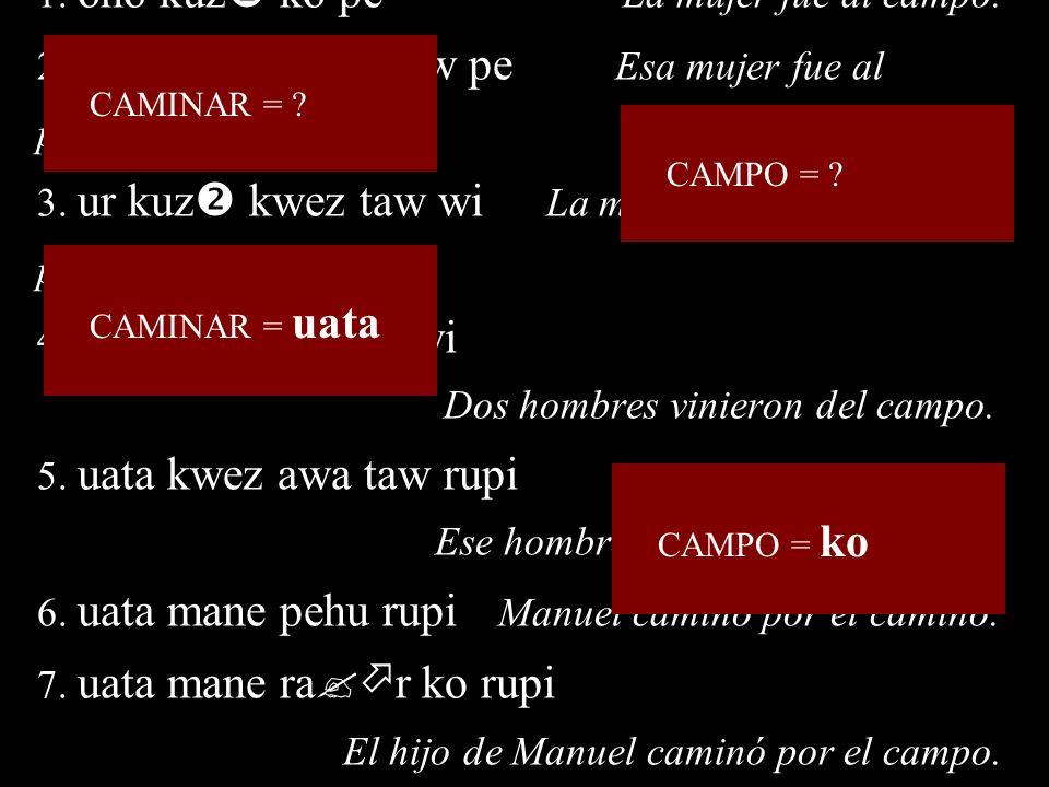 CAMPO = CAMPO = ko CAMINAR = CAMINAR = uata