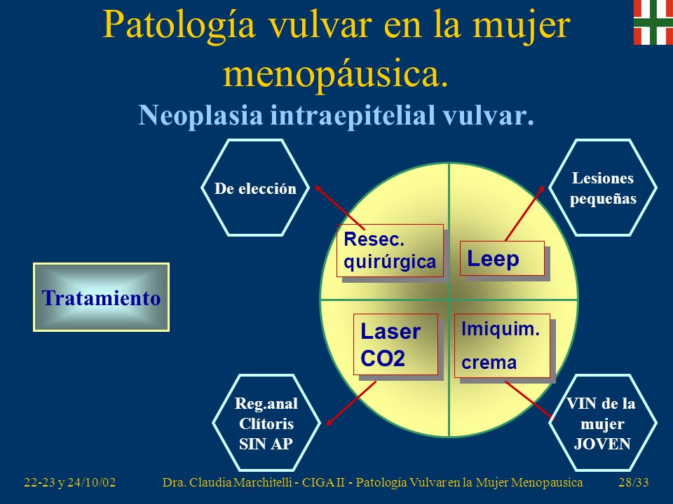 22-23 y 24/10/02Dra. Claudia Marchitelli - CIGA II - Patología Vulvar en la Mujer Menopausica27/33 Patología vulvar en la mujer menopáusica. Neoplasia