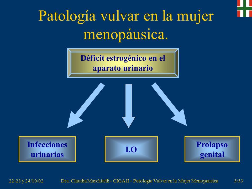 22-23 y 24/10/02Dra. Claudia Marchitelli - CIGA II - Patología Vulvar en la Mujer Menopausica2/33 Patología vulvar en la mujer menopáusica. Descenso e