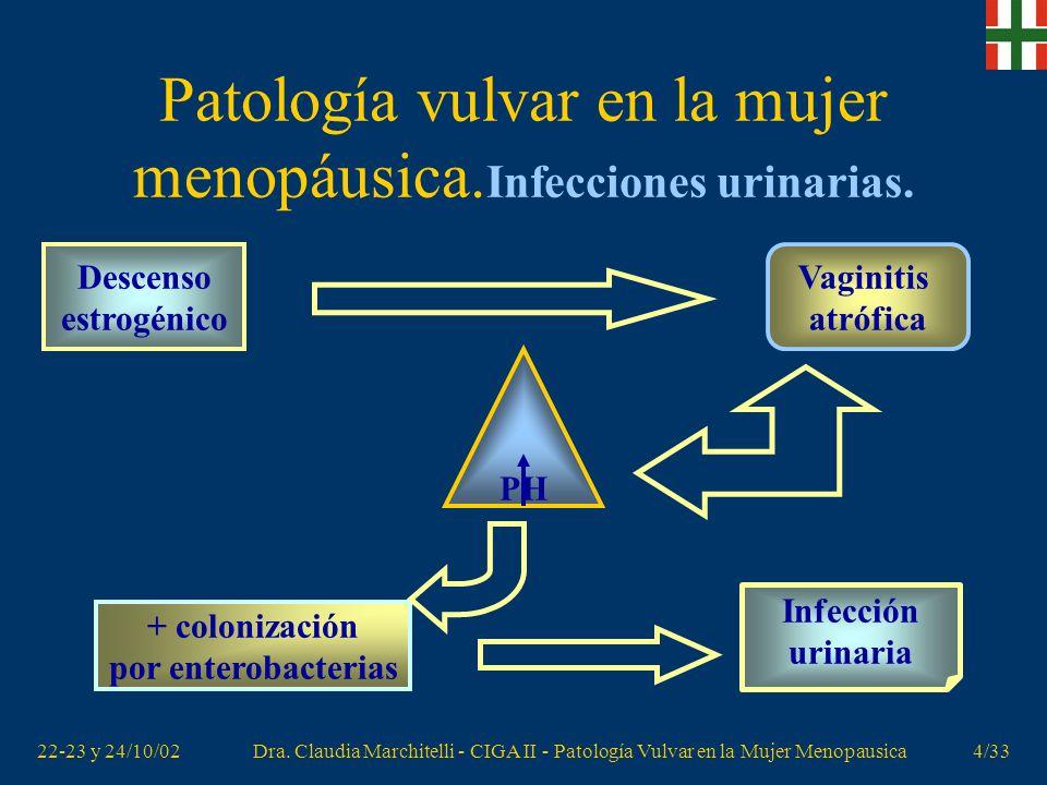 22-23 y 24/10/02Dra. Claudia Marchitelli - CIGA II - Patología Vulvar en la Mujer Menopausica3/33 Patología vulvar en la mujer menopáusica. Déficit es