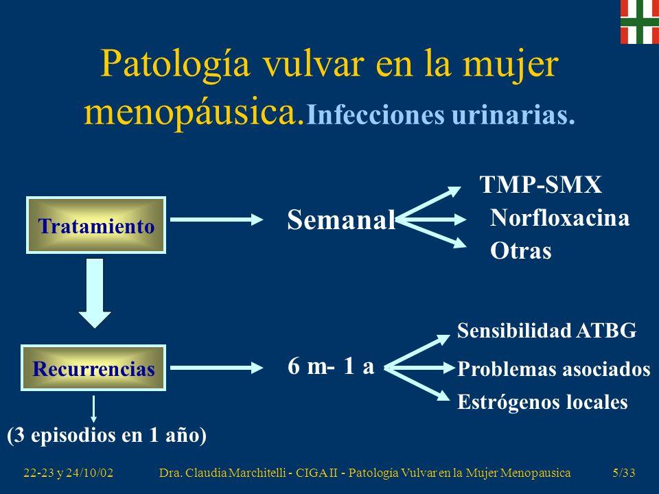 22-23 y 24/10/02Dra. Claudia Marchitelli - CIGA II - Patología Vulvar en la Mujer Menopausica4/33 Patología vulvar en la mujer menopáusica. Infeccione