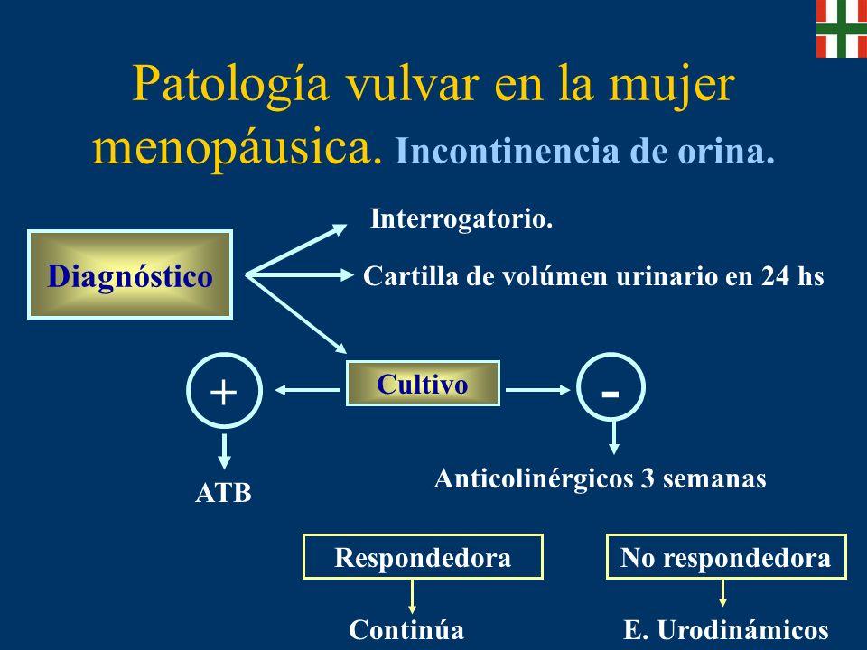 Patología vulvar en la mujer menopáusica.Incontinencia de orina.