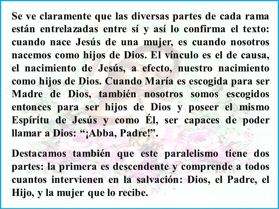 Se ve claramente que las diversas partes de cada rama están entrelazadas entre sí y así lo confirma el texto: cuando nace Jesús de una mujer, es cuando nosotros nacemos como hijos de Dios.