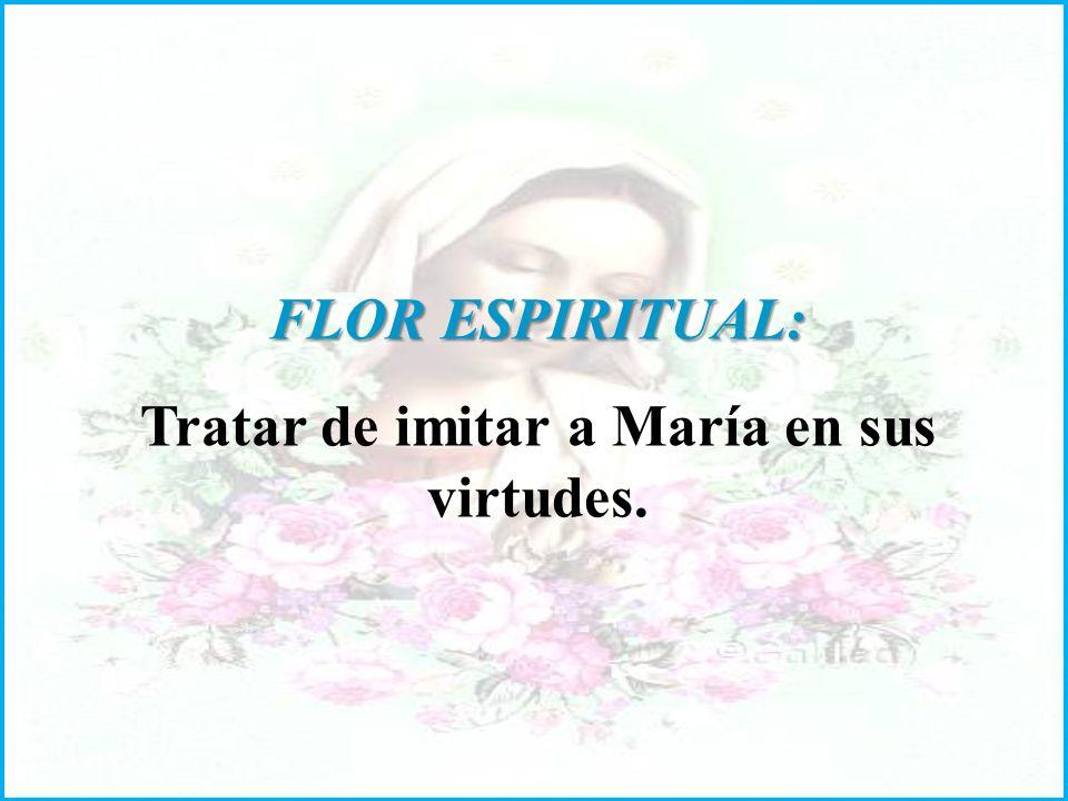 FLOR ESPIRITUAL: Tratar de imitar a María en sus virtudes.
