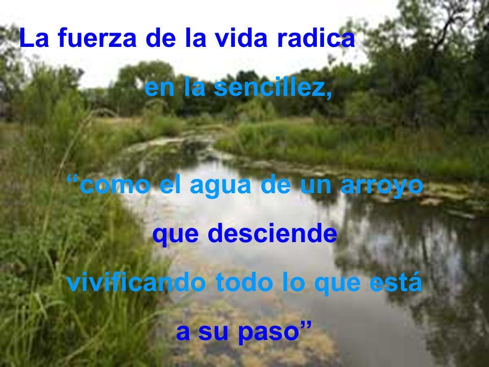 La fuerza de la vida radica en la sencillez, como el agua de un arroyo que desciende vivificando todo lo que está a su paso