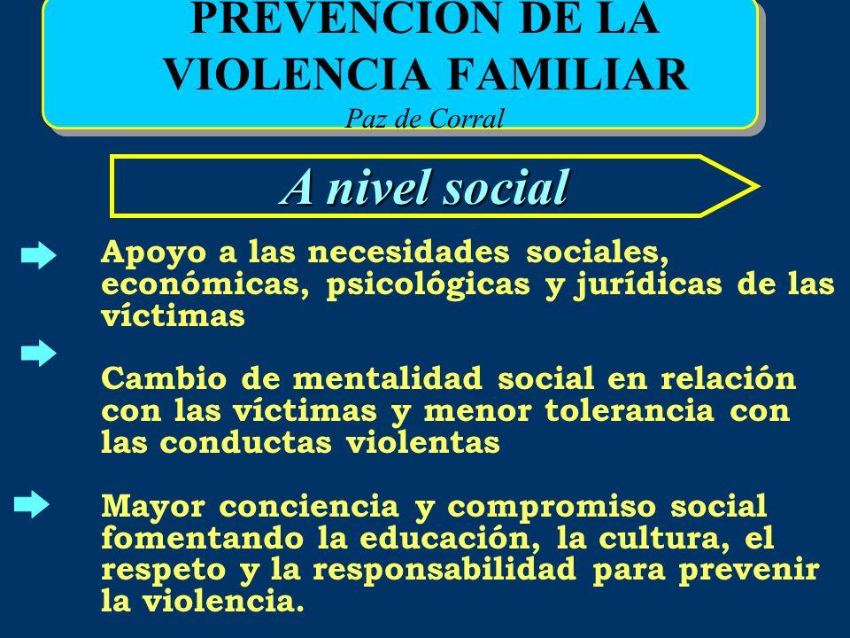 PREVENCIÓN DE LA VIOLENCIA FAMILIAR Paz de Corral A nivel social Apoyo a las necesidades sociales, económicas, psicológicas y jurídicas de las víctima