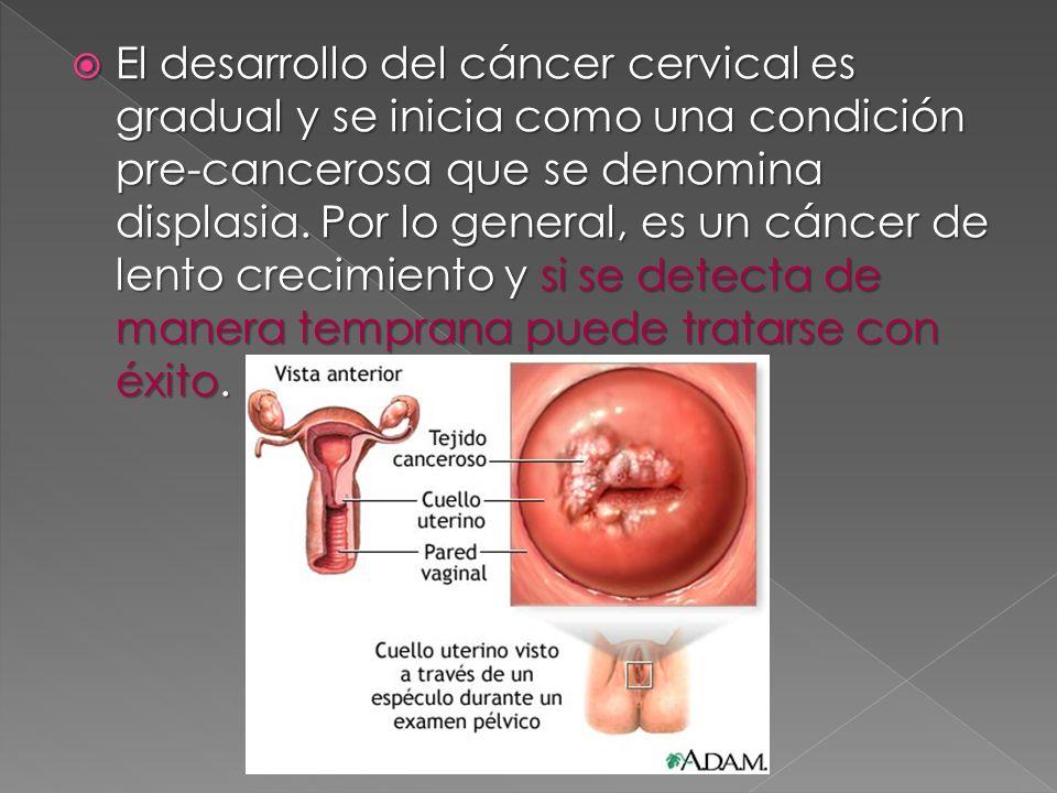 El desarrollo del cáncer cervical es gradual y se inicia como una condición pre-cancerosa que se denomina displasia. Por lo general, es un cáncer de l