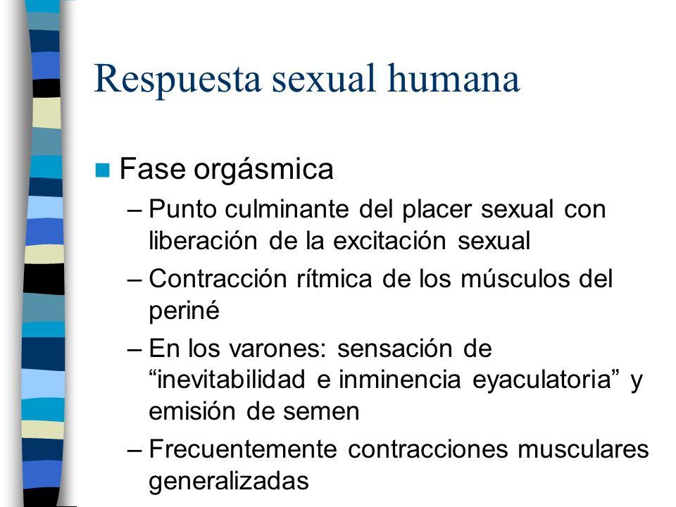 Respuesta sexual humana Fase orgásmica –Punto culminante del placer sexual con liberación de la excitación sexual –Contracción rítmica de los músculos