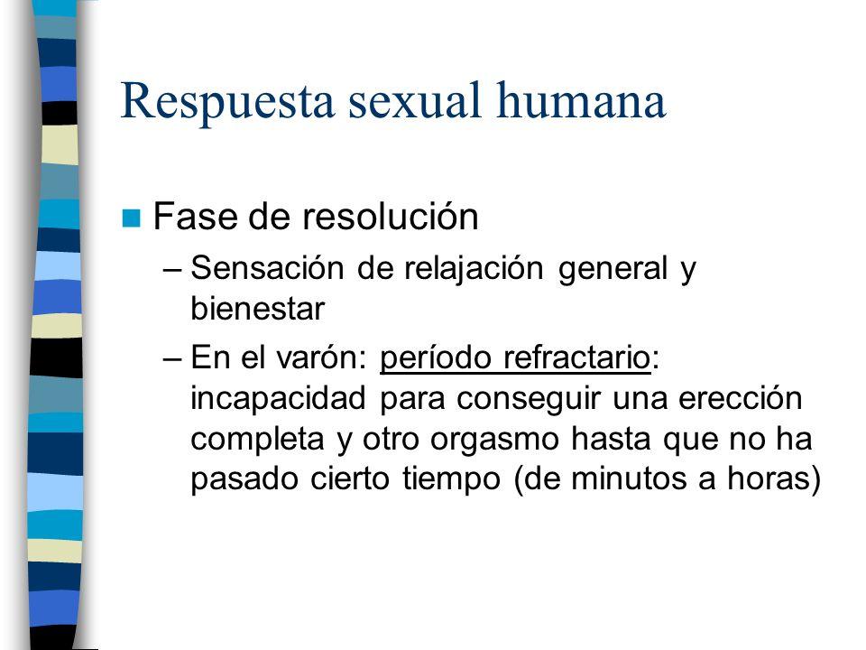 Respuesta sexual humana Fase de resolución –Sensación de relajación general y bienestar –En el varón: período refractario: incapacidad para conseguir