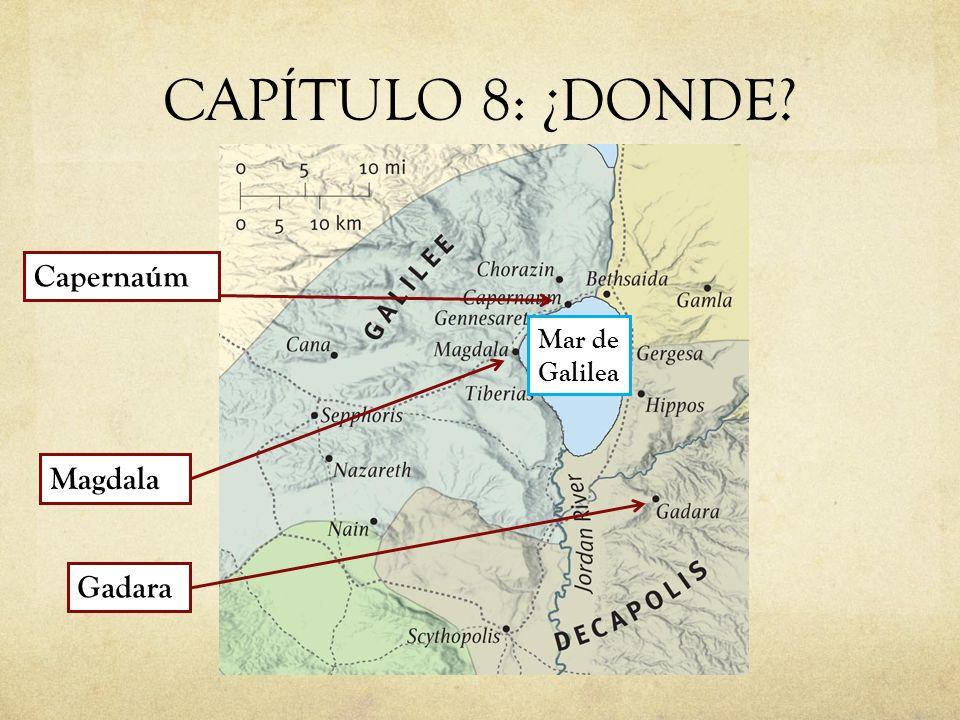 CAPÍTULO 8: ¿DONDE? Capernaúm Gadara Mar de Galilea Magdala