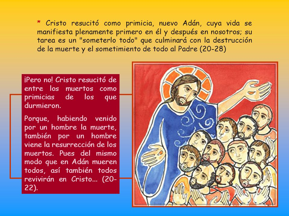 * Si Cristo resucitó, nosotros también. Hay una conexión entre una y otra. Negar nuestra resurrección es negar la de Cristo y esto es hacer de los apó