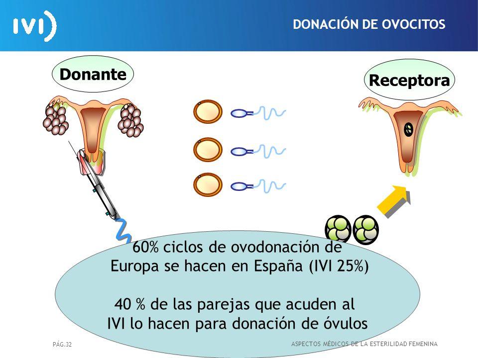 PÁG.32 DONACIÓN DE OVOCITOS Donante Receptora 60% ciclos de ovodonación de Europa se hacen en España (IVI 25%) 40 % de las parejas que acuden al IVI l