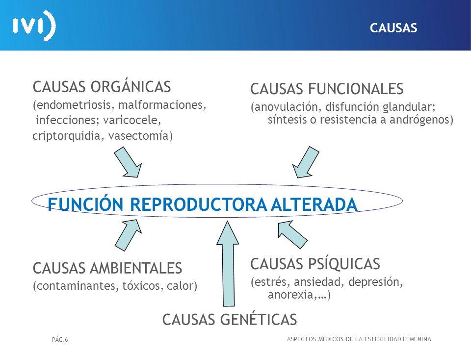 PÁG.6 FUNCIÓN REPRODUCTORA ALTERADA CAUSAS ORGÁNICAS (endometriosis, malformaciones, infecciones; varicocele, criptorquidia, vasectomía) CAUSAS AMBIEN