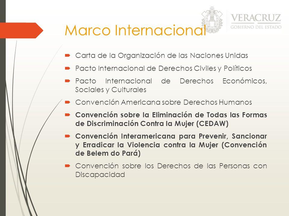 Marco Internacional Carta de la Organización de las Naciones Unidas Pacto Internacional de Derechos Civiles y Políticos Pacto Internacional de Derecho