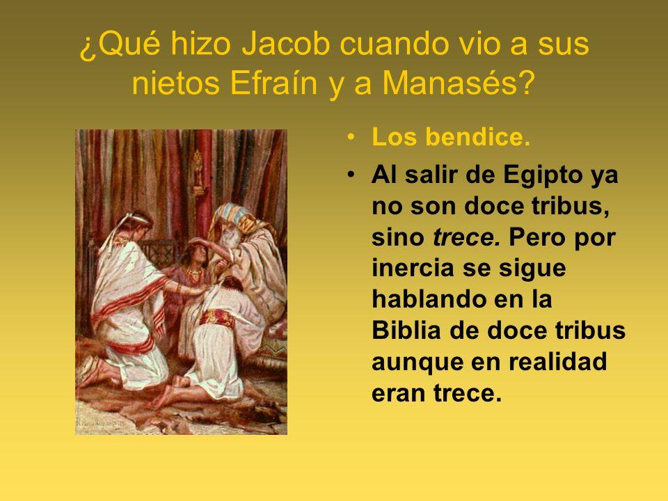 ¿Qué hizo Jacob cuando vio a sus nietos Efraín y a Manasés? Los bendice. Al salir de Egipto ya no son doce tribus, sino trece. Pero por inercia se sig