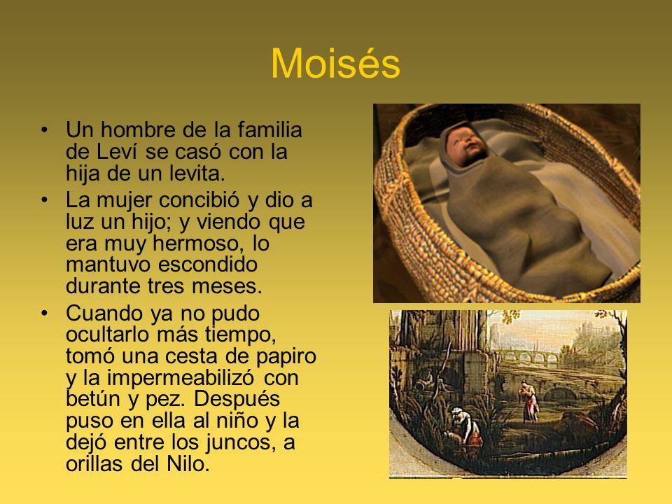 Moisés Un hombre de la familia de Leví se casó con la hija de un levita. La mujer concibió y dio a luz un hijo; y viendo que era muy hermoso, lo mantu