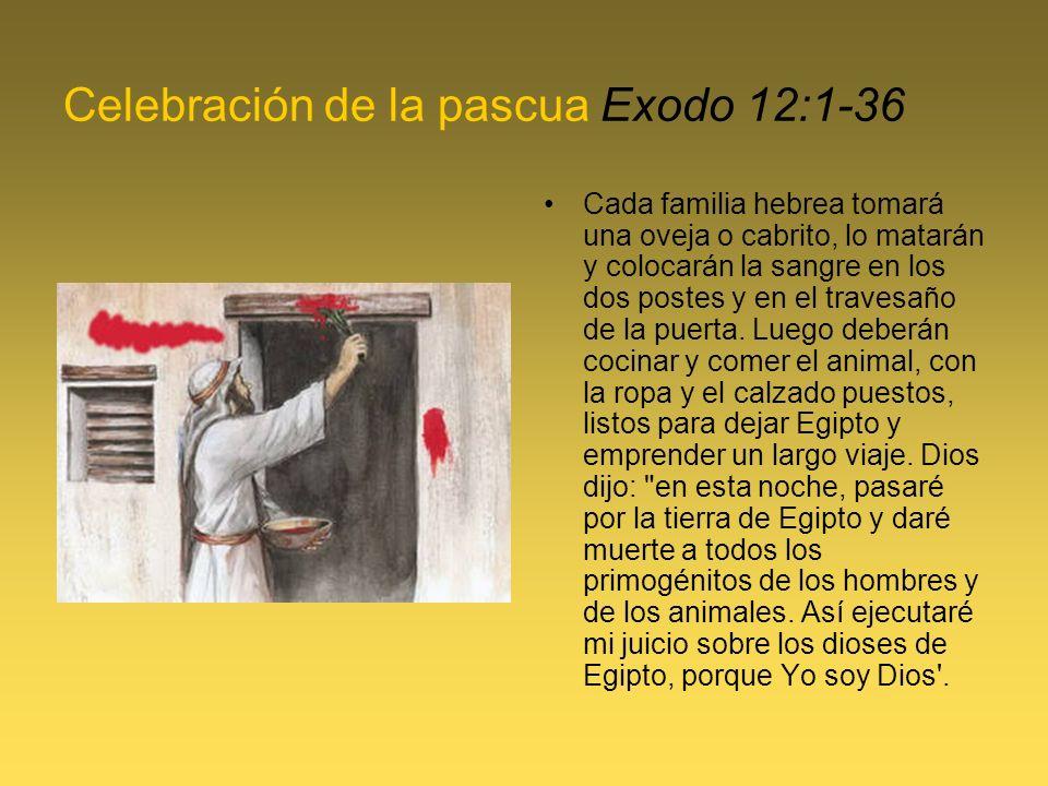 Celebración de la pascua Exodo 12:1-36 Cada familia hebrea tomará una oveja o cabrito, lo matarán y colocarán la sangre en los dos postes y en el travesaño de la puerta.