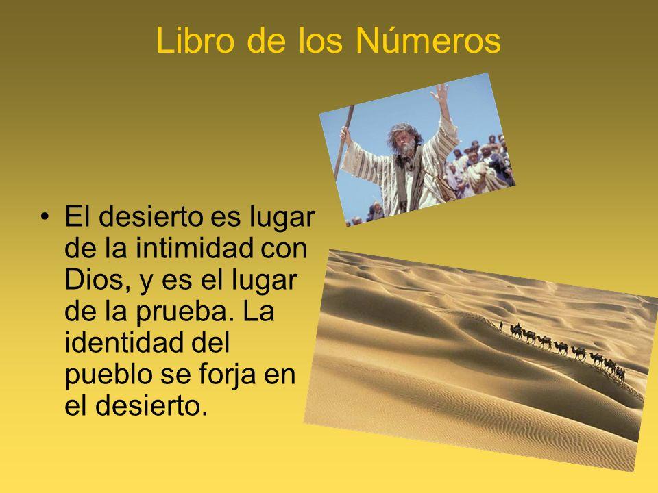Libro de los Números El desierto es lugar de la intimidad con Dios, y es el lugar de la prueba. La identidad del pueblo se forja en el desierto.