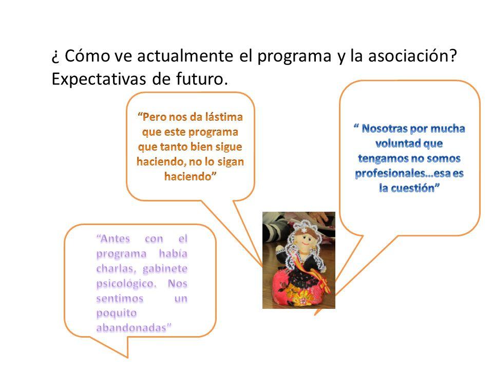 ¿ Cómo ve actualmente el programa y la asociación? Expectativas de futuro.