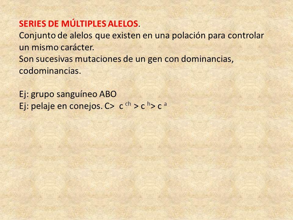 SERIES DE MÚLTIPLES ALELOS. Conjunto de alelos que existen en una polación para controlar un mismo carácter. Son sucesivas mutaciones de un gen con do